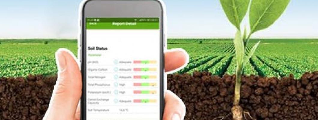 LoRaWAN sprendimas žemės ūkio infrastruktūros monitoringui